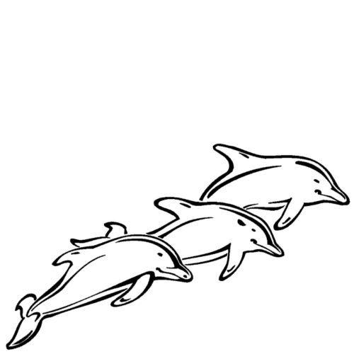 Graverte delfiner fra Gravstein Grossisten