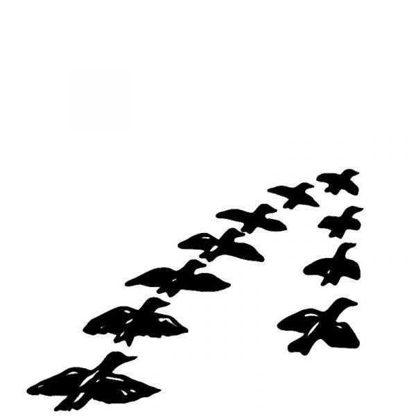 Flokk av fugler fra Gravstein Grossisten